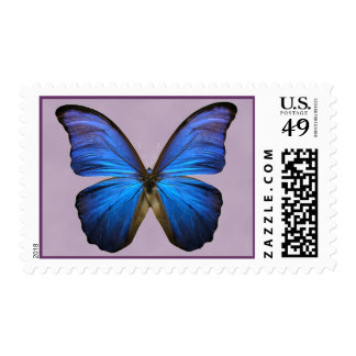 Gorgeous Blue Morpho Butterfly Postage Stamps