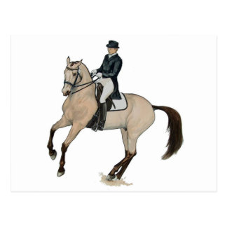 Gorgeous Buckskin Dressage Horse Art Postcard
