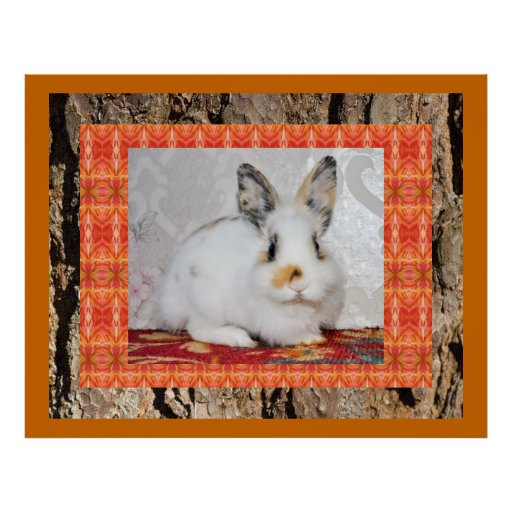 GORGEOUS BUNNY COLLAGE POSTER