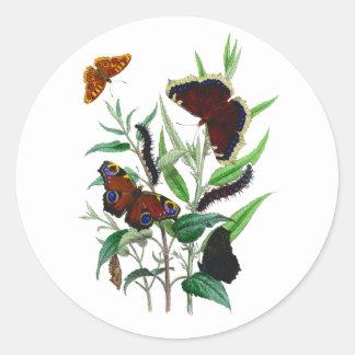 Gorgeous Butterflies Classic Round Sticker