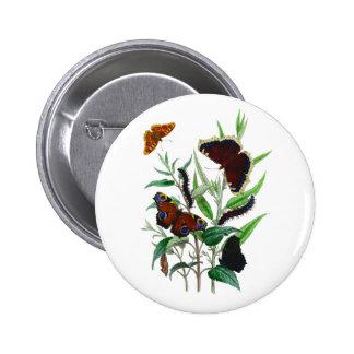 Gorgeous Butterflies Pinback Button