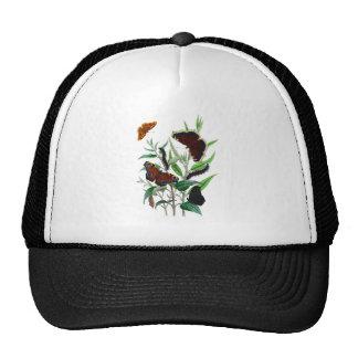 Gorgeous Butterflies Trucker Hat