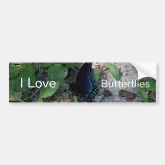 Gorgeous Butterfly Photograph Bumper Sticker
