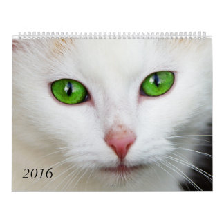 Gorgeous Cat Eyes Calendar