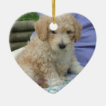 Gorgeous cavapoo puppy looking your way, isolated Double-Sided heart ceramic christmas ornament