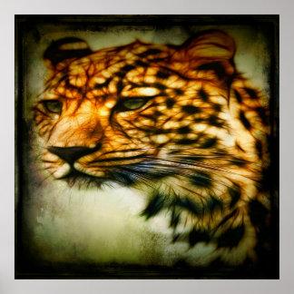Gorgeous Cheetah Poster