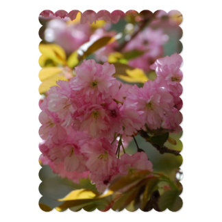 Gorgeous Cherry Blossoms 5x7 Paper Invitation Card