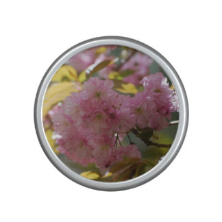 Gorgeous Cherry Blossoms Speaker