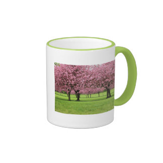 GORGEOUS CHERRY FLORAL RINGER COFFEE MUG