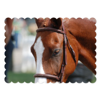 Gorgeous Chestnut Show Horse 5x7 Paper Invitation Card