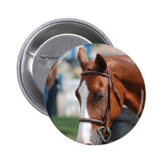 Gorgeous Chestnut Show Horse Pinback Button
