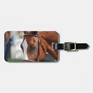 Gorgeous Chestnut Show Horse Tag For Luggage