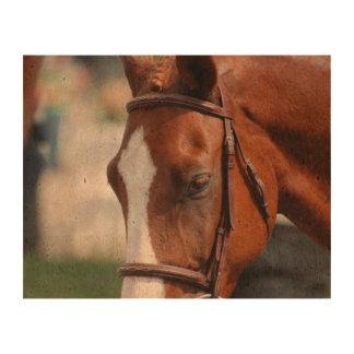 Gorgeous Chestnut Show Horse Cork Paper Print