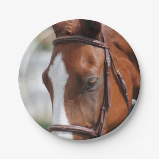 Gorgeous Chestnut Show Horse 7 Inch Paper Plate
