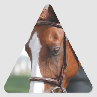 Gorgeous Chestnut Show Horse Triangle Stickers