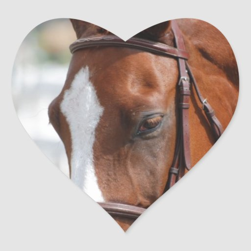 Gorgeous Chestnut Show Horse Heart Stickers