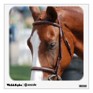 Gorgeous Chestnut Show Horse Wall Skins