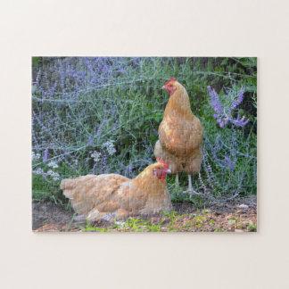 Gorgeous Chicken Puzzle