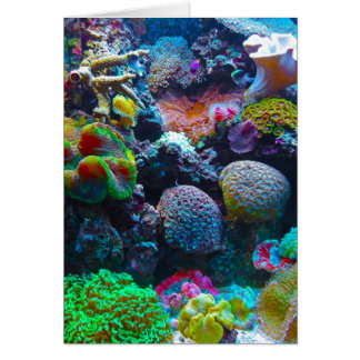 Gorgeous Coral Reef Stationery Note Card