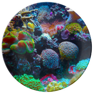 Gorgeous Coral Reef Porcelain Plate