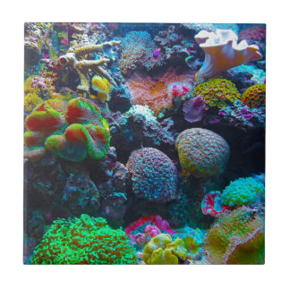Gorgeous Coral Reef Tile