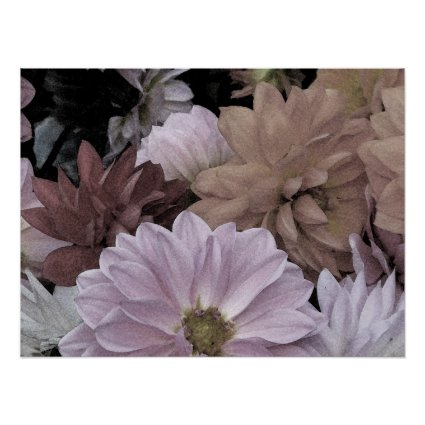 Gorgeous Dahlia Garden Flowers Abstract Poster