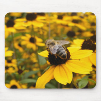 GORGEOUS DAISY FIELDS & HONEY BEE MOUSE PAD