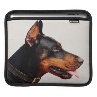 Gorgeous Doberman Pinscher Sleeve For iPads