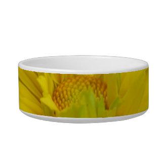 Gorgeous False Sunflower Pet Bowl