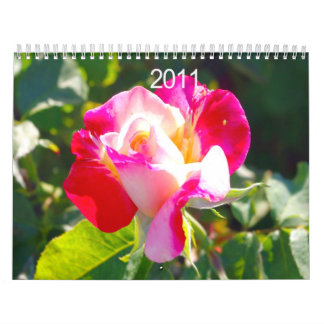 Gorgeous Flowers Caledar Wall Calendars
