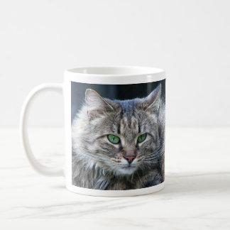 Gorgeous Fluffy Cat with Awesome Eyes Coffee Mug