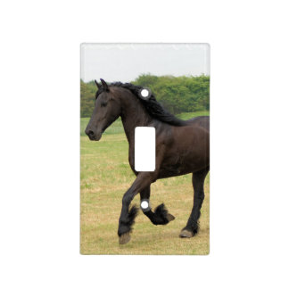 Gorgeous Friesian Horse Light Switch Cover
