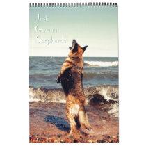 Gorgeous German Shepherd Calendar