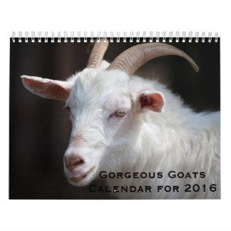 Gorgeous Goats 12 Month Calendar for 2016