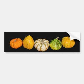 """Gorgeous Gourds"" collection Bumper Sticker"