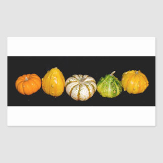 """Gorgeous Gourds"" collection Rectangular Sticker"