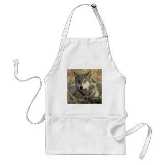 Gorgeous Gray Wolf Adult Apron