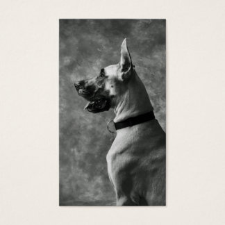 Gorgeous Great Dane Business Card