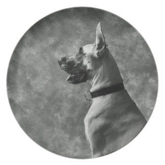 Gorgeous Great Dane Party Plate