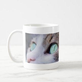 Gorgeous Green Eyed Gray Tiger Cat Coffee Mug