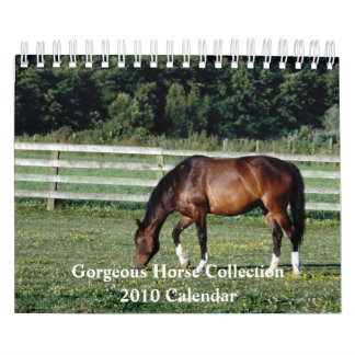 Gorgeous Horse 2010 Calendar