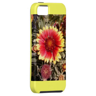 Gorgeous IPhone 5 Case, floral, bright