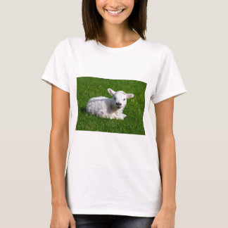 GORGEOUS LITTLE LAMB T-Shirt