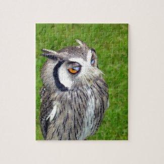 Gorgeous Little Owl Jigsaw Puzzle