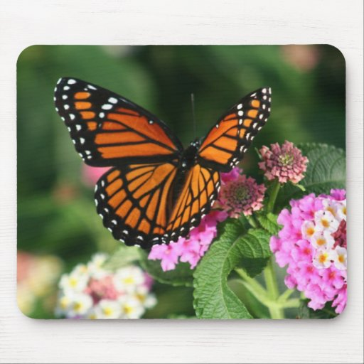Gorgeous Monarch Butterfly Design Mousepads