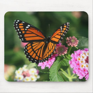 Gorgeous Monarch Butterfly Design Mousepads