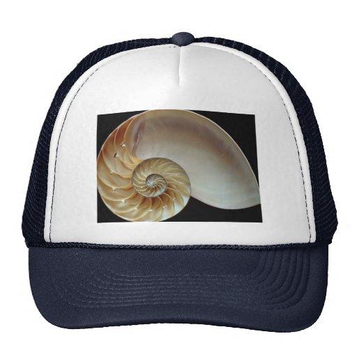 Gorgeous Nautilus shell Mesh Hat