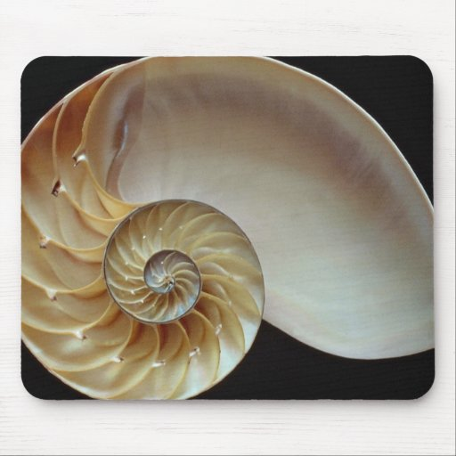 Gorgeous Nautilus shell Mouse Pads
