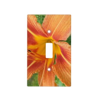 Gorgeous Orange Flower Light Switch Light Switch Cover