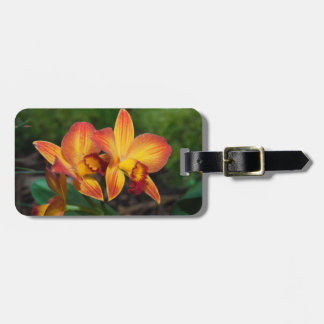 Gorgeous Orange Yellow Rhyncattleanthe Orchid Bag Tag